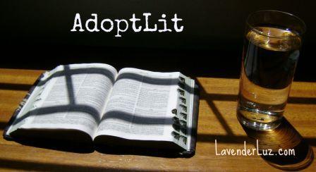 Summer Reading: New Adoption Books