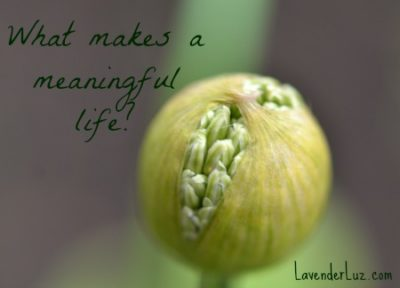 what makes a life meaningful