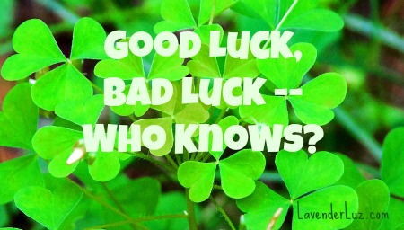 good luck clover and shamrocks
