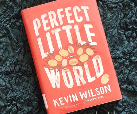 "Read With Me: The Novel ""Perfect Little World"""