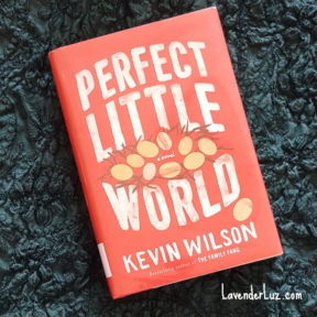 perfect little world adoption book discussion