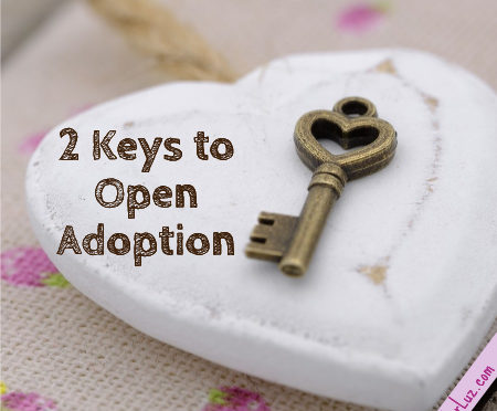 OA 101: 2 Key Points For Adoptive Parents Entering Into Open Adoption
