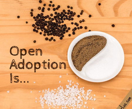spicy yin yang nature of open adoption