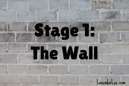 the wall of closed adoption era