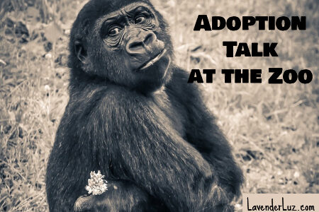 Gorilla and adoption talk at the zoo