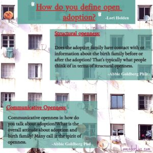 Abbie Goldberg, PhD, on the two types of openness in adoption.